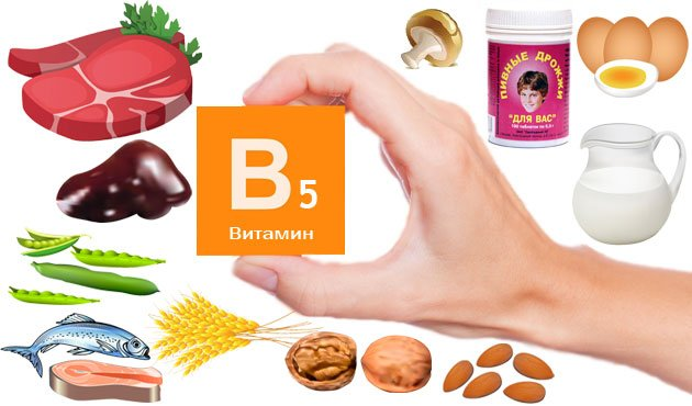 Витамин В (пантотеновая кислота)