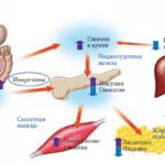 Глюкозно-галактозная мальабсорбция